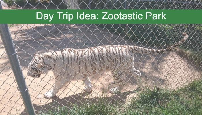 Day Trip Idea: Zootastic Park